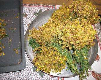 Hypericum perforatum, balm herb, dried balm herb, Hypericum herb, botanical Hypericum, Health and wellnes , Herbal product