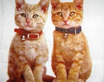 NAPKIN 2 beautiful red cats #AN093