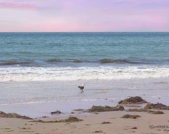 Ocean sceneDigital Backdrop - Photography Background Prop for Children or Adults - Instant Download