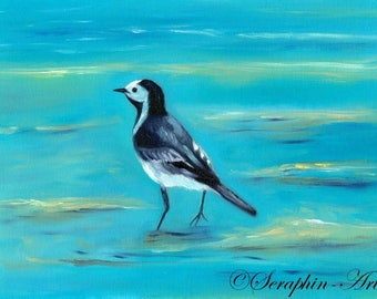 Wildlife White Wigtail Original Oil Painting