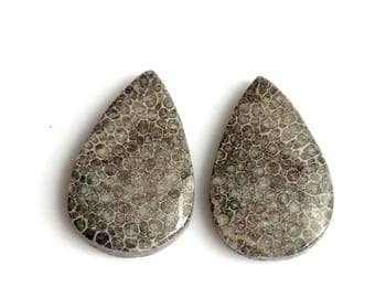 Black Coral Pear Pair Cabochon,Size- 23x15, MM, Natural Black Coral, AAA,Quality  Loose Gemstone, Smooth Cabochons.