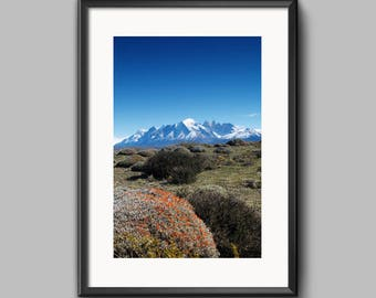 Digital Print - Mountain with Wildflowers, Southern Patagonia