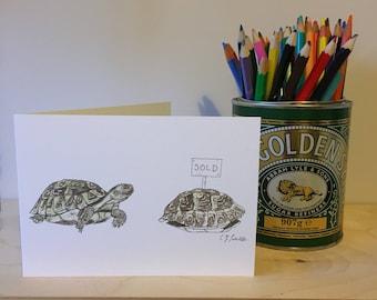 Tortoise's New Home - Greetings Card