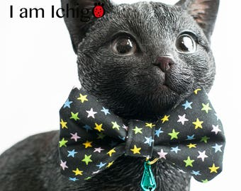 colorful stars x Cat collar with a bell