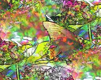 Color Abstract Print