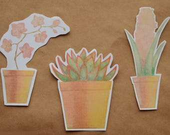 Orchid succulent and hyacinth sticker pack