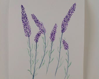 Elegant Lavender watercolour painting