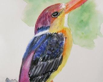 Cute oriental Kingfisher Bird art watercolor Original painting