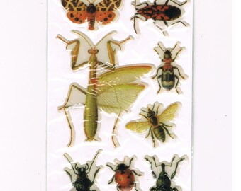 Insect Collector Stickers Mantis Beetles Bee and More