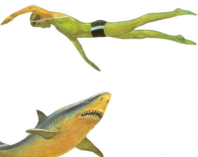 Shark Art, Original Collage Artwork