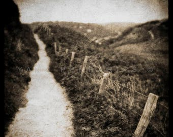 Black and withe decor, Rustic Wall Art, Landscape photography, Nature photography, Country Decor, Photography French Country