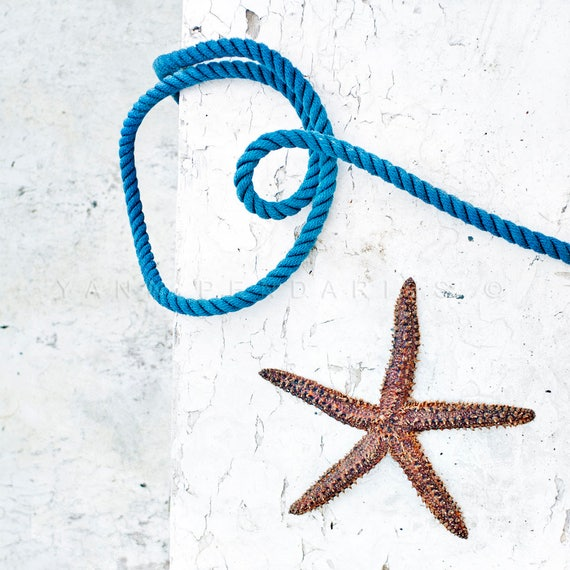 starfish decor, beach decor, cottage decor, seaside print, beach cottage decor, seaside decor, ocean photography, ocean print,sea decor