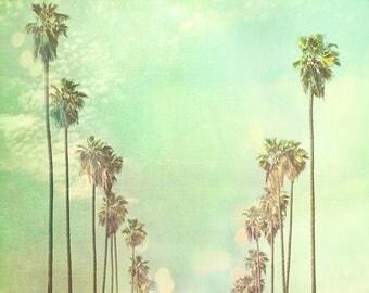 Los Angeles photography, photo of California palm trees in a row La La Land sunny day summer vacation blue mint green sky travel nursery art