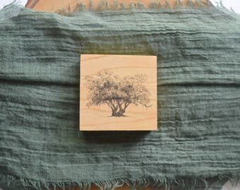 Lover's Oak Live Oak Tree Pen and Ink Drawing Fine Art Print on 3x3 Wood Panel