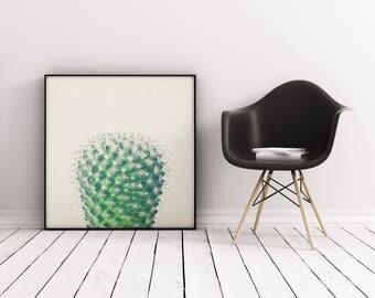 Cactus Print, Botanical Art, Gift for Gardener, Kitchen Wall Art - Cactus IV