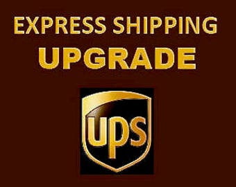 EXPRESS SHIPPING UPGRADE for International Orders