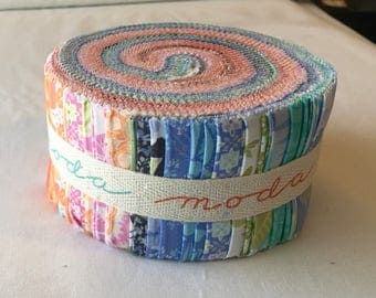 Honey Honey Out of Print Kate Spain Jelly Roll Quilting Sewing Orange Navy Pink Blue Florals piecesofpine