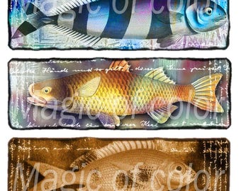 Fanciful Fish - 12  1x3 Inch Rectangular  JPG images - Digital  Collage Sheet