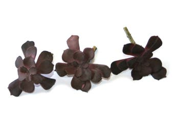 3 Small Soft Latex Echeveria Succulent Floral Picks in Purple Mauve - Two Flowers - Artificial Succulents