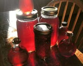 ChagaBerry Elixir for Immune Boost
