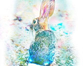 Rabbit print, rabbit decor, rabbit baby, forest animals, forest print, rabbit print art, turquoise, pink, bunny print, art print, baby bunny