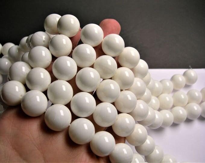 Tridacna - 16mm round - 1 full strand  - 25 beads - Genuine Tridacna - AA QUALITY - hippopus  - RFG1374