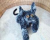 RESERVED FOR JULIE, Devon Rex  Cat