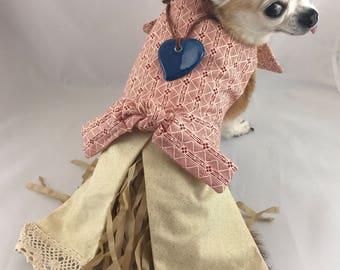 Moana Inspired dog costume, dog moana costume. Disney character dog dress, party dog dress, birthday dog dress, xsm-xxxlarge dog dress