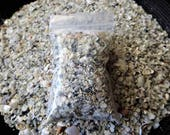 Shell Sand - Resin, Incense and Sage accessory