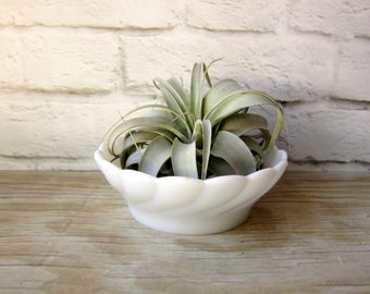 Fluted Milk Glass Bowl Centerpiece Wedding Planter
