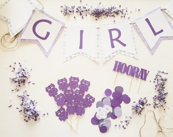 It's A Girl Theme Party Set, Owl Party, Complete Party Set, Party Theme Kit, Party Decorations, Party Decor, Baby Shower Theme Ready to Ship