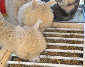 Alpaca livestock  low waste feeder box plans tutorial