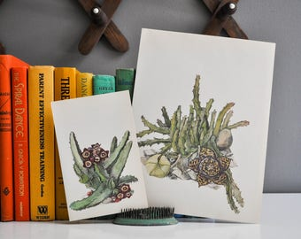Vintage Petite Cactus Book Plate