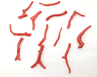 Genuine italian coral branches CO00018 , 12 branches, 28 cts