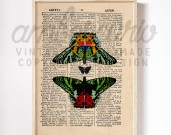 Bright Butterfly Family Colorful Collage Entomology Insect Art Print on Unique Unframed Upcycled Bookpage