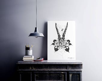 A4 Illustrated 'Roe Deer' Black and White Print