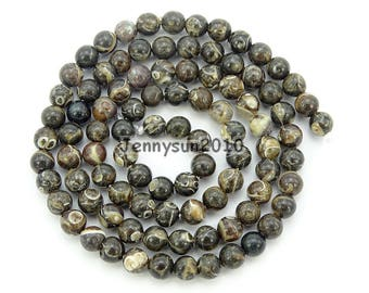 Natural Turritella Agate Gemstone Round Beads 15.5'' Strand 4mm 6mm 8mm 10mm Great For Jewelry Design