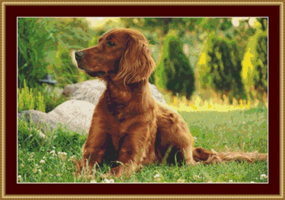Irish Setter Cross Stitch Pattern /Digital PDF Files /Instant downloadable