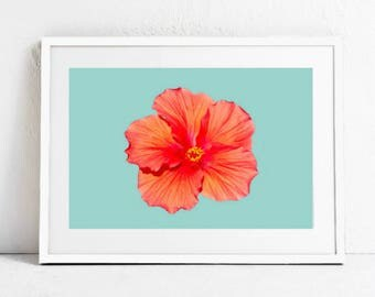Hibiscus Wall Art Print, Digital Download, Maui, Hawaii Wall Art Print, Flower Wall Art Print, Printable Art, Hawaii Wall Art, Beach Art
