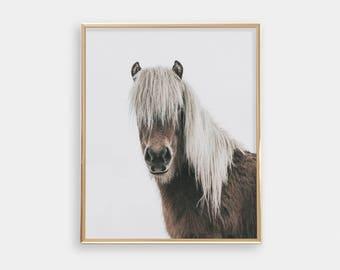 Modern Nursery Art Print - Horse Photography - Minimalist Wall Art - Brown And Grey - Animal Print - Shipped Print - SKU:9443