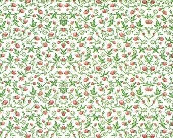 Raspberry-Carta Varese paper