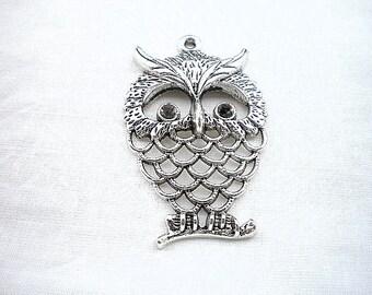 1 charm OWL 58 x 33