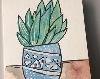 Succulent in blue pot