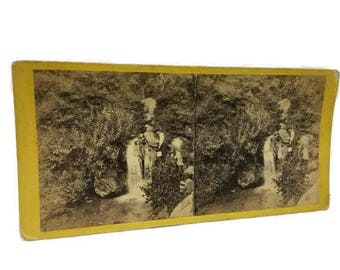 Stereoview E. & H.T. Anthony Central Park New York No. 6205 Drip Rock Ramble