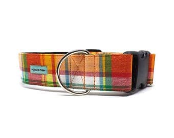 Mesa Plaid - Dog Collar | Orange, Red, Green & White Plaid Collar Available in 4 widths