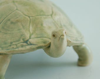 Turtle, hand made stoneware, green glaze