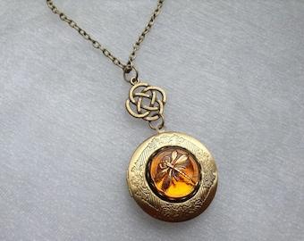 Dragonfly in Amber Locket Necklace, Scottish / Irish Celtic Knot