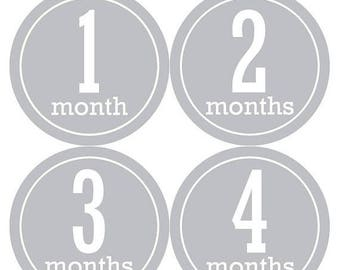 Monthly Baby Stickers Baby Month Stickers Baby Girl or Boy Month Stickers Monthly Photo Stickers Monthly Milestone Stickers 1142