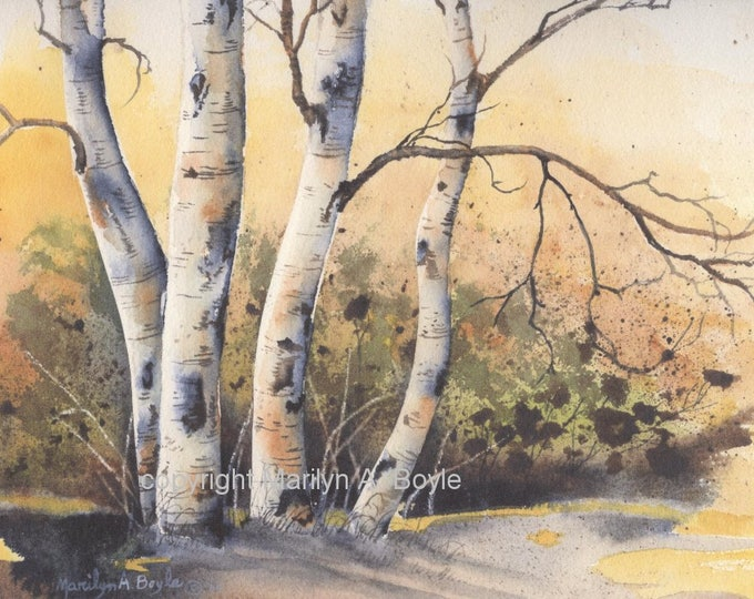 PRINT - AUTUMN SCENE; birch grove, fall season, watercolor, 8 x 10 inches, printed on 90 lb watercolor paper, Canadian art, wall art