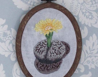 Blossoming Living Stone Lithops Framed Embroidery